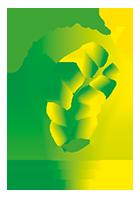 Logo GrEnFIn